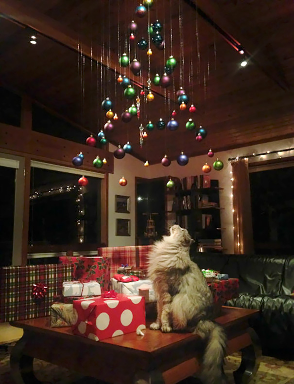 A minimalist tree that's just out of kitty's reach! - 20 Genius Ways To Stop Your Pet From Destroying Your Christmas Tree!